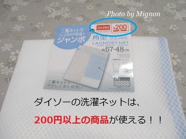 IMG_5900.JPG